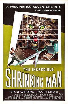 IncredibleShrinkingMan-poster